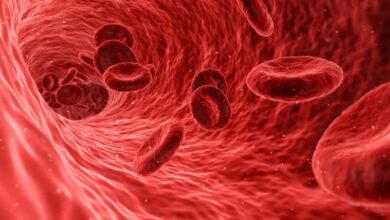 Photo of Kanımız Neden Kırmızıdır?