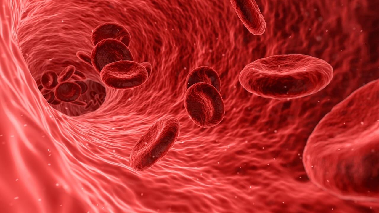 Kana Kırmızı Rengini Veren Madde Nedir?